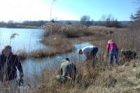 Chantier nature au étangs du Plessis Brion