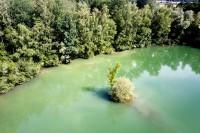 Visite du Domaine des étangs bleus